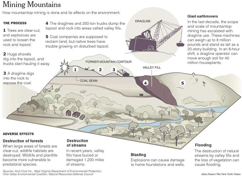 preserving ohio valley coal companies and its wild life